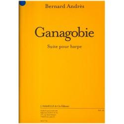 Bernard Andrès, Ganagobie