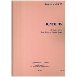 Bernard Andrès, Jonchets