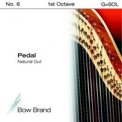 G - SOL 6 octave 1 boyau