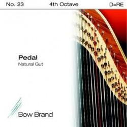 D - RE 23 octave 4 boyau