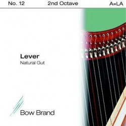 A - LA 12 octave 2 boyau -...